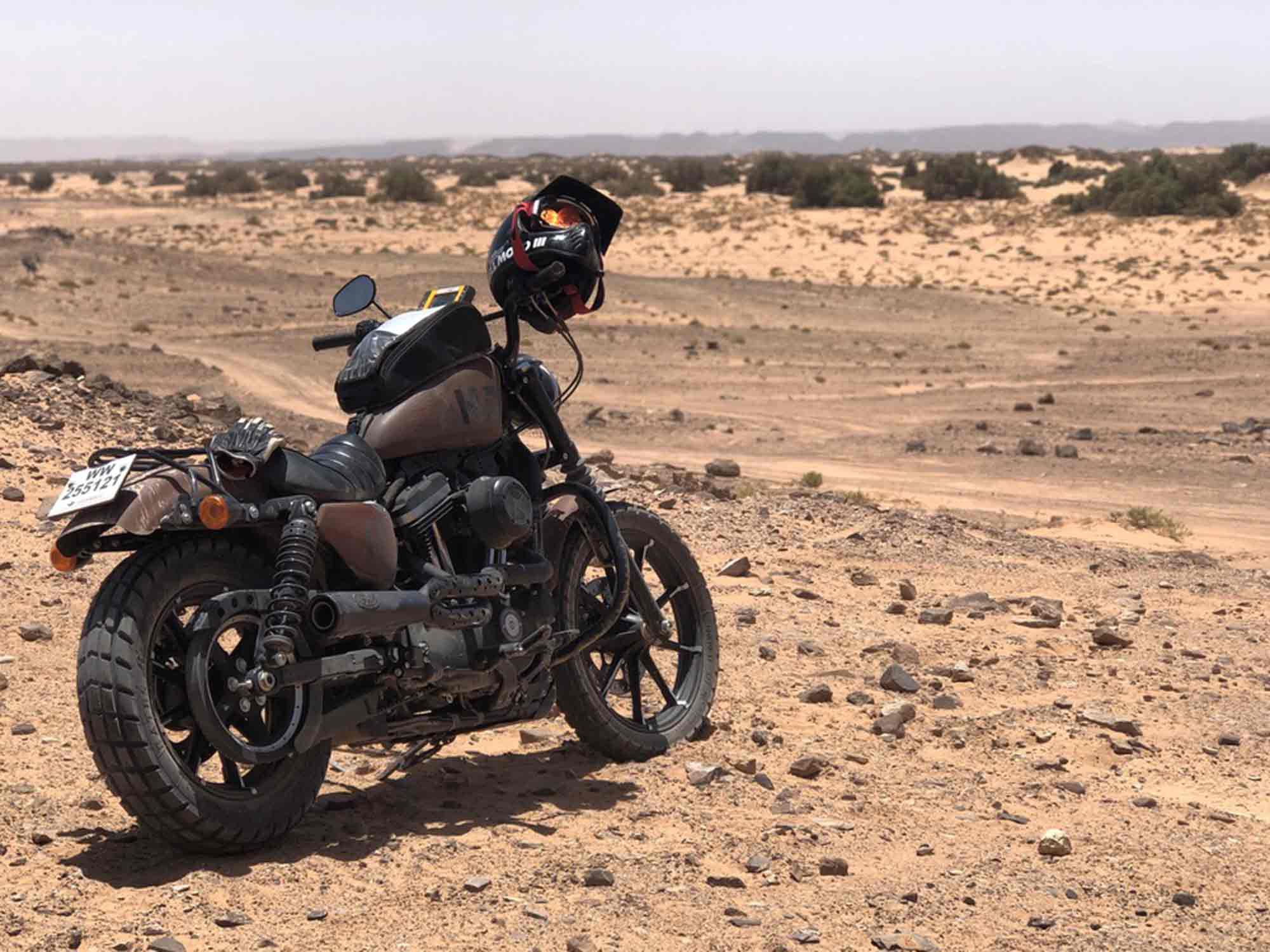 """""""All that the light touches…"""" My Harley-Davidson Nightster 883 surveying the Moroccan desert."""