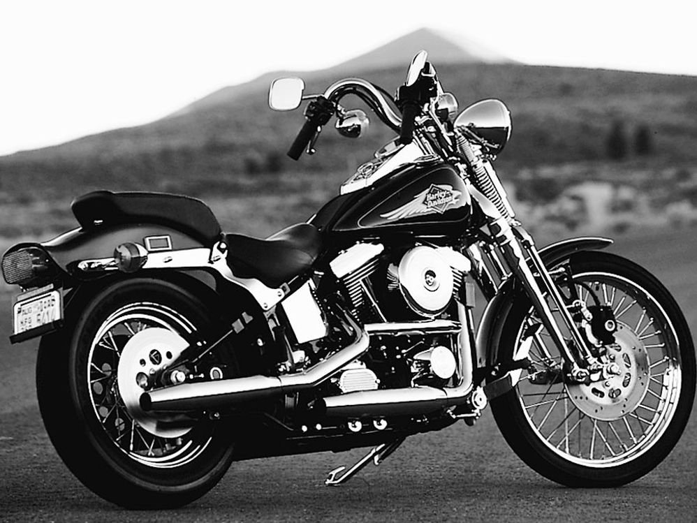 Big Twin Rumble: Harley-Davidson FXSTS Springer Softail