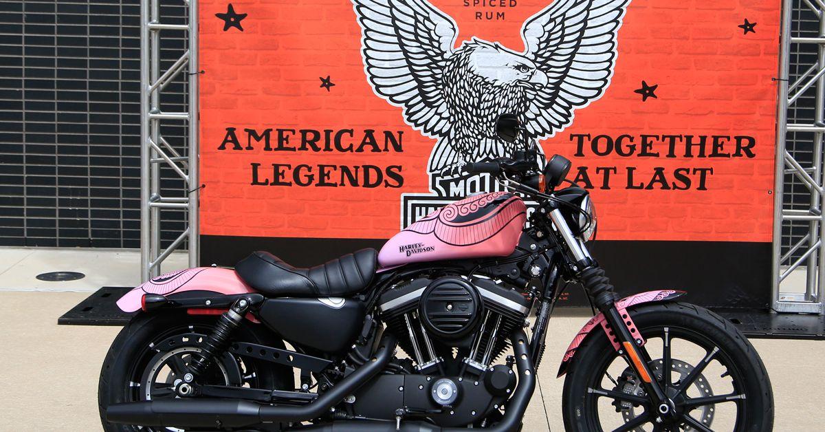 Sailor Jerry X Harley-Davidson Custom Sportster