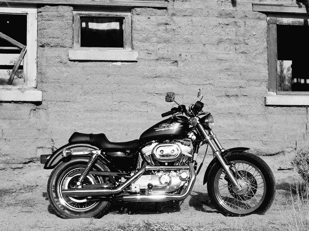 Delving Deeper With The 1997 Harley Davidson Sportster 883 From The